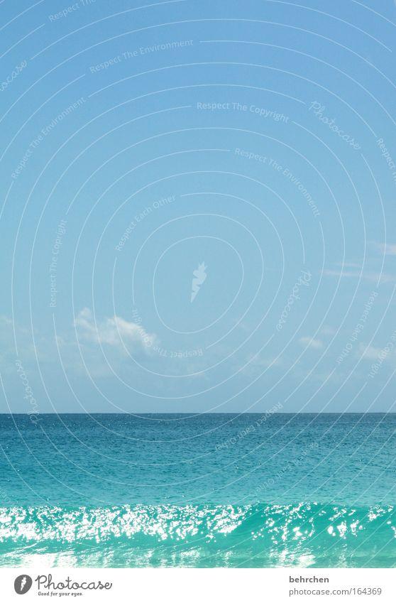 seychellen gehen bei mir am besten Wasser Himmel Meer blau Sommer Strand Ferien & Urlaub & Reisen Wolken Ferne Freiheit träumen Zufriedenheit Wellen Küste Horizont Insel