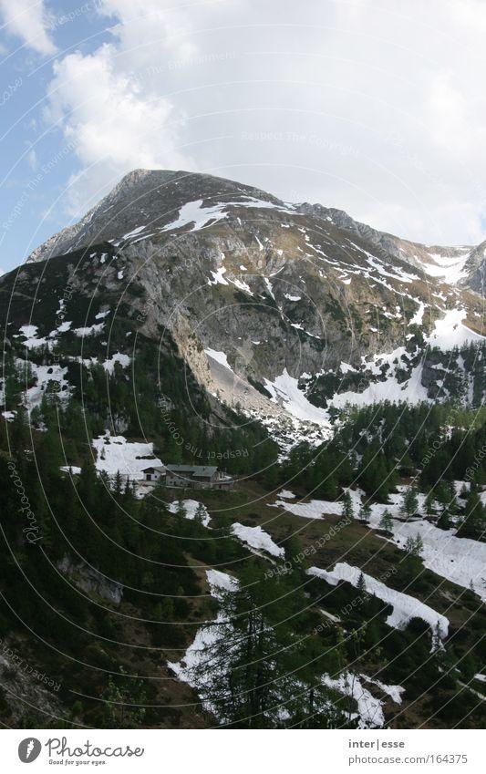 Juniberg Himmel Baum Wolken Einsamkeit Landschaft kalt Schnee Berge u. Gebirge Luft Felsen Alpen Frieden Schönes Wetter Gipfel Alm Berchtesgadener Alpen