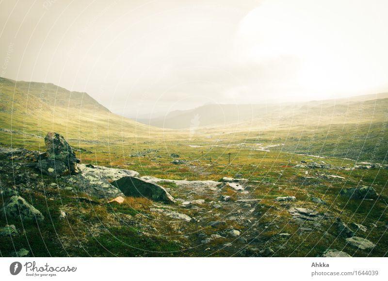 Tundra Ferien & Urlaub & Reisen Einsamkeit Ferne Berge u. Gebirge Wege & Pfade Freiheit wild Regen glänzend Nebel Abenteuer einzigartig Wandel & Veränderung