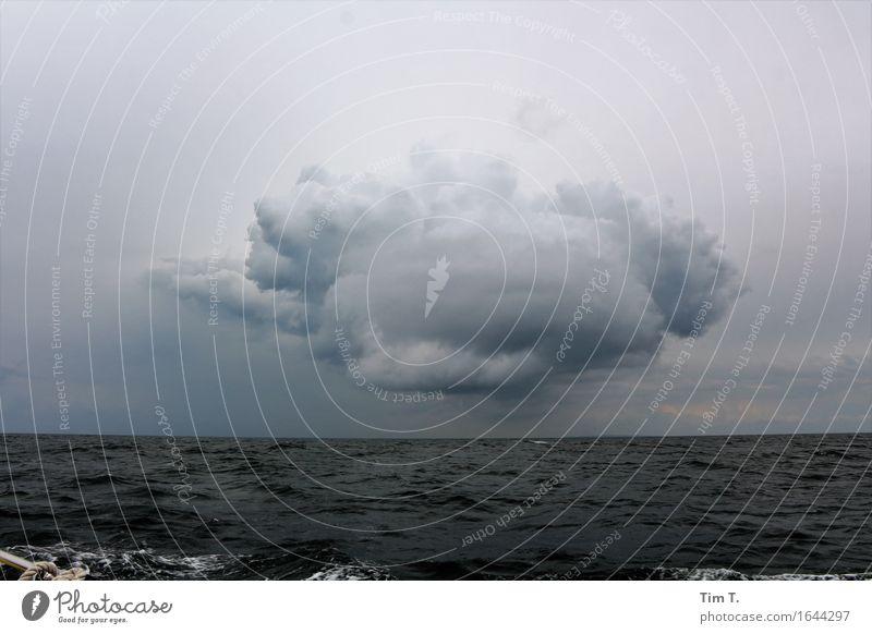 eine Wolke Umwelt Natur Urelemente Wasser Himmel Wolken Gewitterwolken Horizont Sommer Wellen Ostsee Meer Klima Farbfoto Außenaufnahme Menschenleer