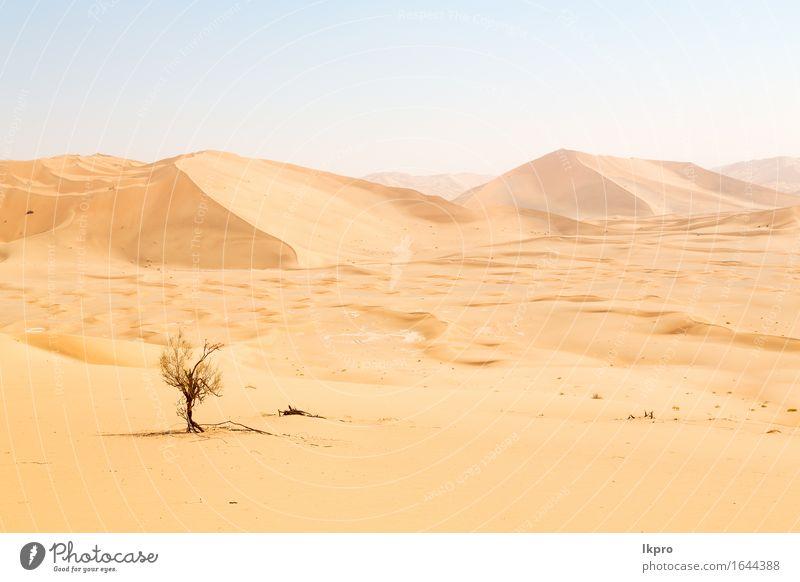 Sanddüne in Oman alten Wüste Rub al khali schön Ferien & Urlaub & Reisen Tourismus Abenteuer Safari Sommer Sonne Natur Landschaft Himmel Horizont Park Hügel
