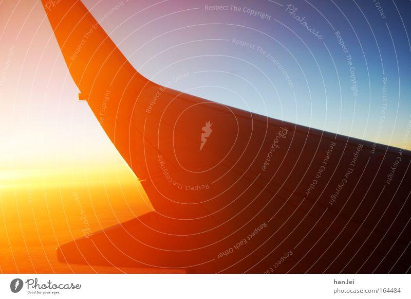 Abflug Himmel Sonne blau rot Sommer Ferien & Urlaub & Reisen ruhig Ferne Leben Erholung Freiheit Luft Flugzeug Verkehr Ausflug Luftverkehr