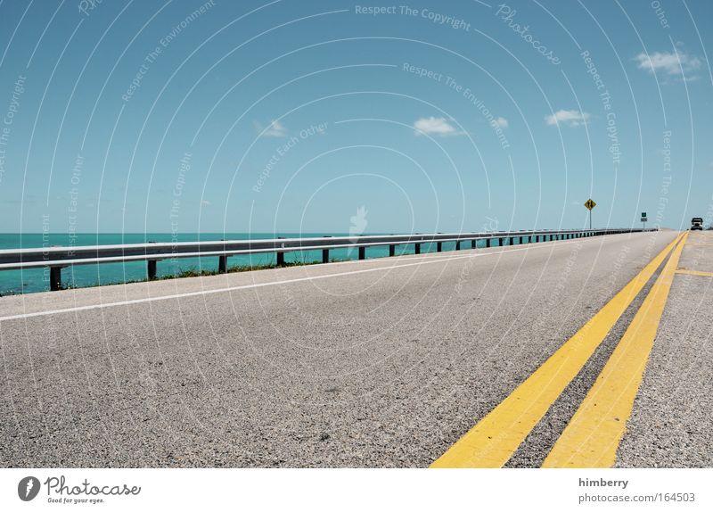 frogger Sommer Ferien & Urlaub & Reisen Straße Stil Wege & Pfade Angst Straßenverkehr groß Horizont Verkehr Geschwindigkeit Ausflug Brücke gefährlich