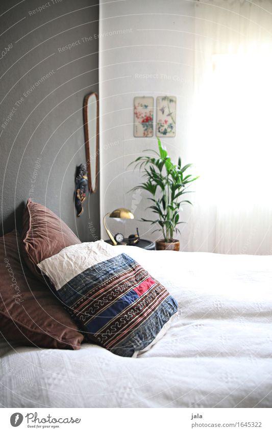 ruhe schön Innenarchitektur natürlich Stil Design Wohnung Raum Häusliches Leben Zufriedenheit elegant Dekoration & Verzierung ästhetisch einfach Bett Möbel