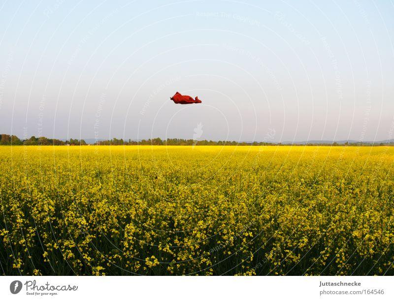 Known Flying Object Natur grün Sommer gelb Frühling Freiheit Landschaft Zufriedenheit orange Feld Umwelt fliegen frei Horizont Wachstum T-Shirt