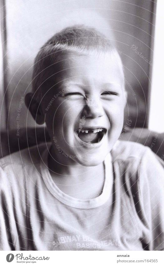 Zahnloser Lacher Mensch Kind Freude Gesicht Leben Junge lachen Glück Mund maskulin frei Fröhlichkeit authentisch Zukunft Coolness Zähne