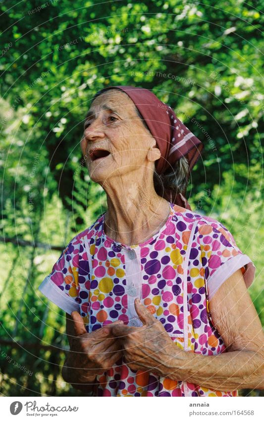 Leben pur Farbfoto Außenaufnahme Tag Porträt Halbprofil Frau Erwachsene Weiblicher Senior Großeltern Großmutter 1 Mensch 60 und älter alt sprechen Kommunizieren