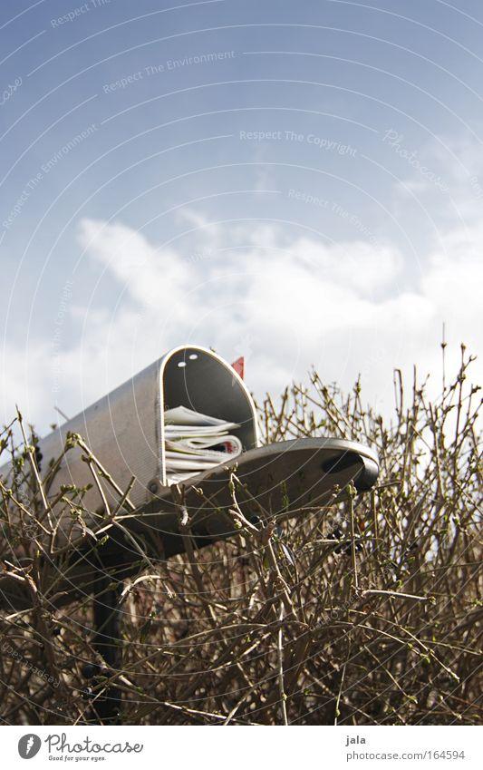 Sie haben Post Farbfoto Gedeckte Farben Außenaufnahme Nahaufnahme Menschenleer Textfreiraum oben Tag Himmel Schönes Wetter Pflanze Sträucher Garten Briefkasten