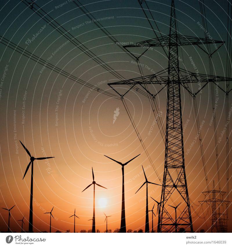 We are the Champions Baum Landschaft Zusammensein Horizont Energiewirtschaft Luft Kraft Erfolg Wind stehen Technik & Technologie hoch groß Zukunft Klima