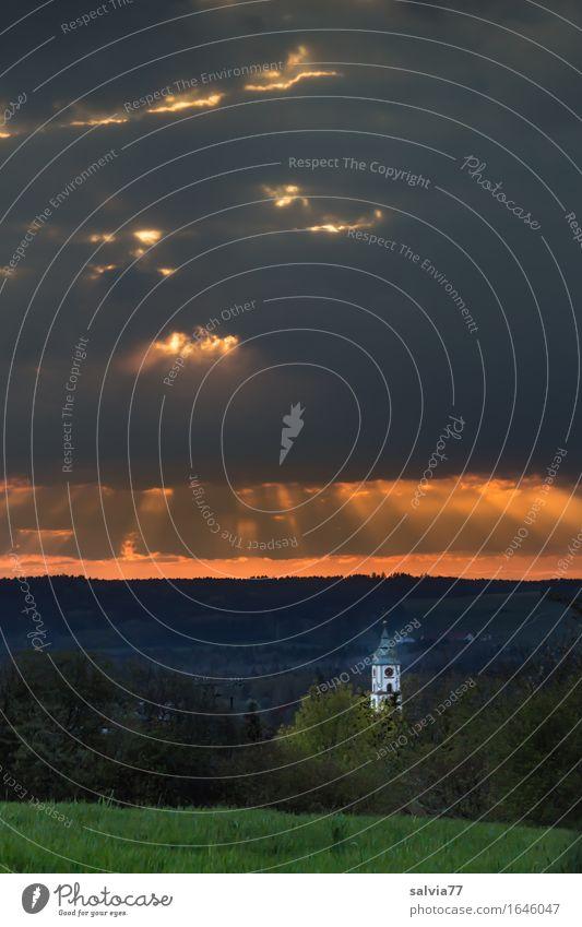 Erleuchted Himmel Natur Ferien & Urlaub & Reisen Landschaft ruhig Wald Wiese Religion & Glaube Stimmung Tourismus Idylle Ausflug Gewitterwolken Segnung Kirchturmspitze
