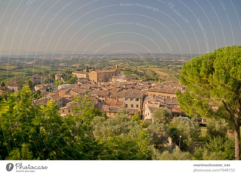San Gimignano Ferien & Urlaub & Reisen Sommer Sonne Landschaft Freude Ferne Architektur Glück Freiheit Tourismus Ausflug Schönes Wetter Hügel Sehenswürdigkeit