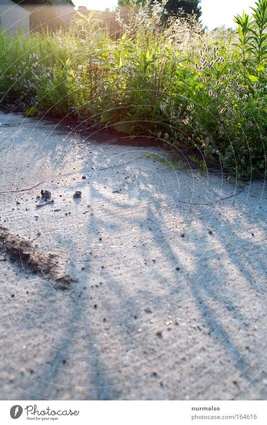 da iss nix !? Natur schön Pflanze Freude ruhig Tier Straße Umwelt Spielen Landschaft Bewegung Garten Glück Wege & Pfade Stimmung Arbeit & Erwerbstätigkeit