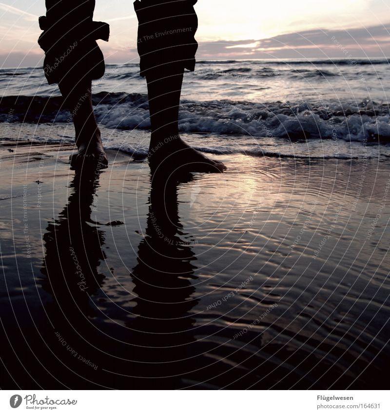 Nasse Füße riechen nicht, aber schmecken salzig! Wasser Meer Einsamkeit Fuß Beine Ostsee Nordsee Shorts Barfuß Mensch Sonnenuntergang