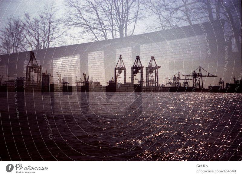 Hafenliebe Doppelbelichtung Lomografie glänzend Wasser Elbe Kran Industrie Schrift Buchstaben Graffiti Baum Fernweh Hamburg