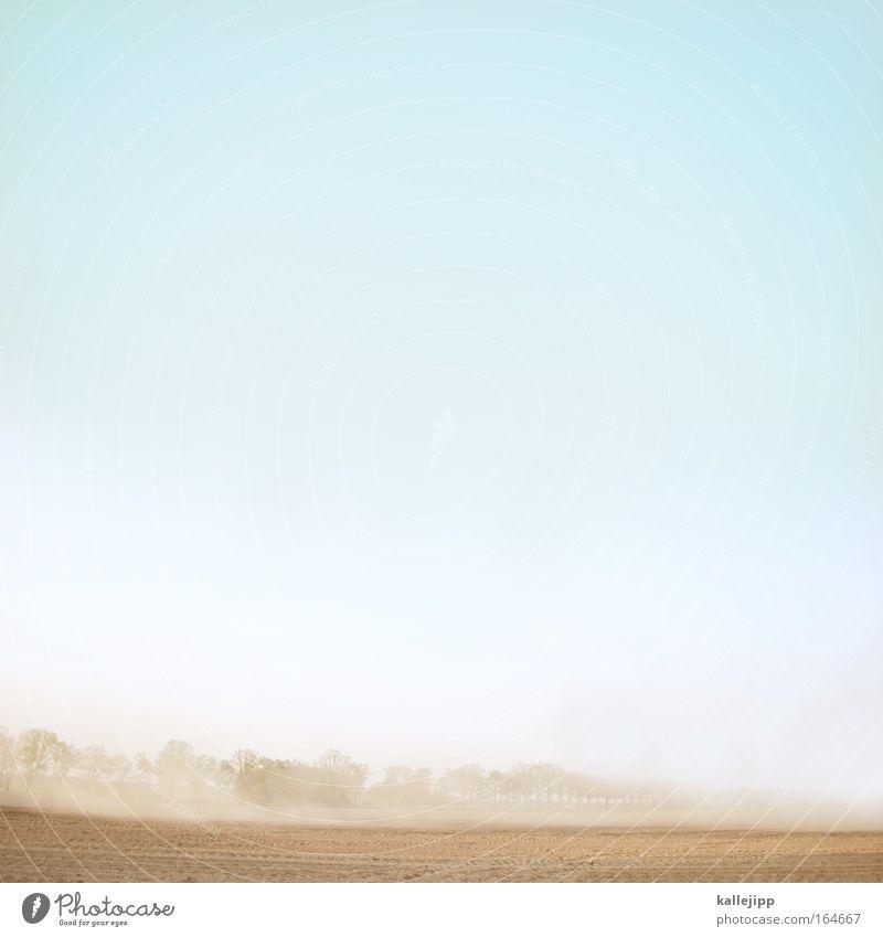 staub zu staub Natur blau Pflanze Sommer Umwelt Landschaft Wärme Sand Luft Erde braun Arbeit & Erwerbstätigkeit Wind Feld Klima Wachstum
