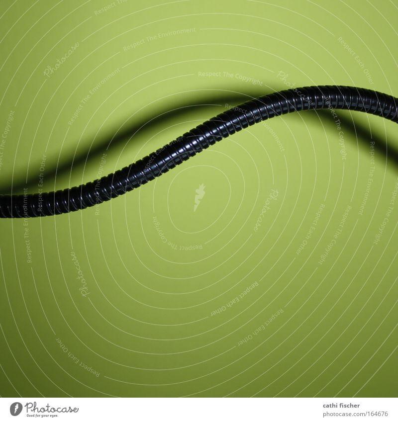 black mamba Farbfoto mehrfarbig Innenaufnahme abstrakt Menschenleer Hintergrund neutral Blitzlichtaufnahme Schatten Kontrast Wellen Dekoration & Verzierung