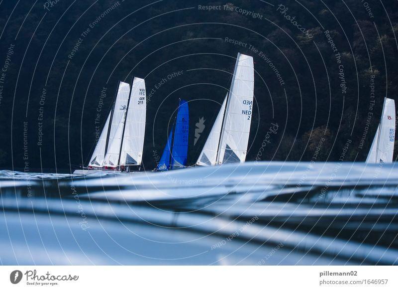 Sailing Wassersport Segeln Wellen Segelboot ästhetisch maritim blau schwarz ruhig Zufriedenheit Bewegung Erholung Freizeit & Hobby Stimmung Katamaran