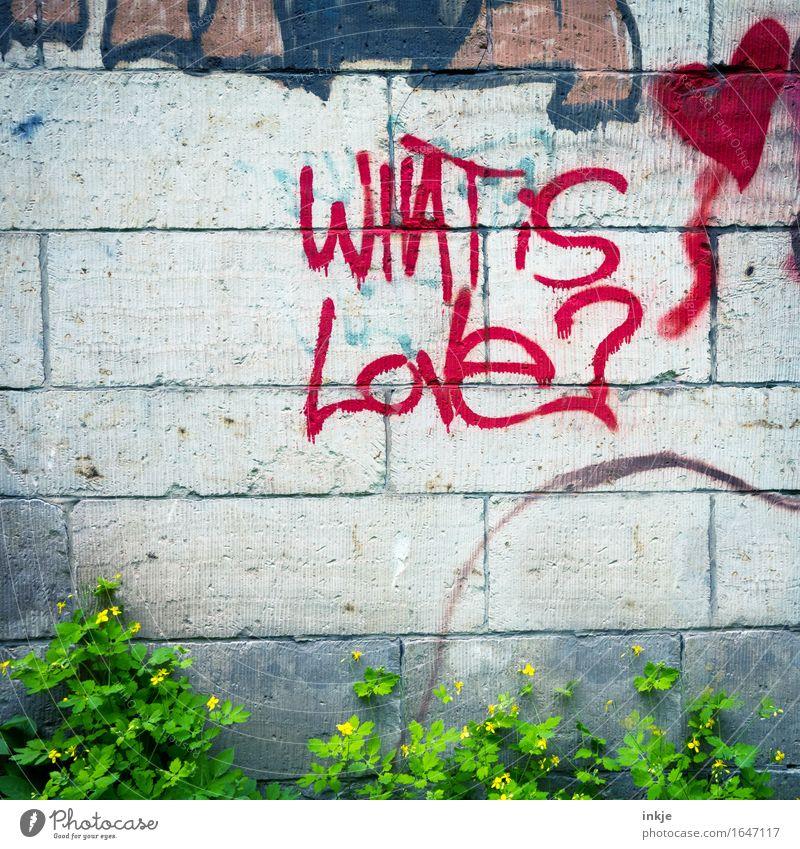 Liebe ist... rot Wand Graffiti Lifestyle Mauer Schriftzeichen Herz Romantik Zeichen Verliebtheit Fragen Sinn Fragezeichen Philosophie Vor hellem Hintergrund