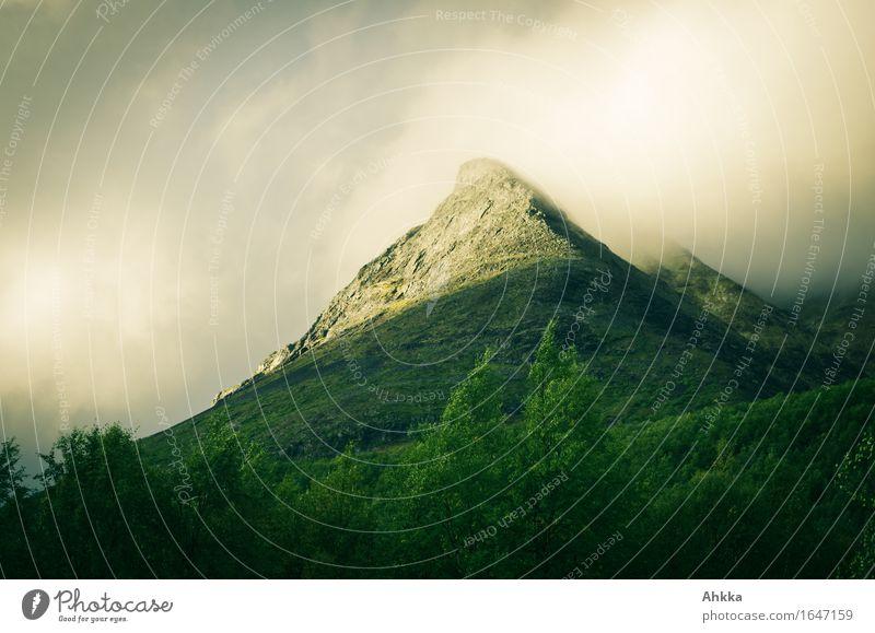 Glühberg Natur grün Landschaft gelb Stimmung wild leuchten glänzend Wind fantastisch einzigartig groß Wandel & Veränderung Gipfel Hoffnung Ziel