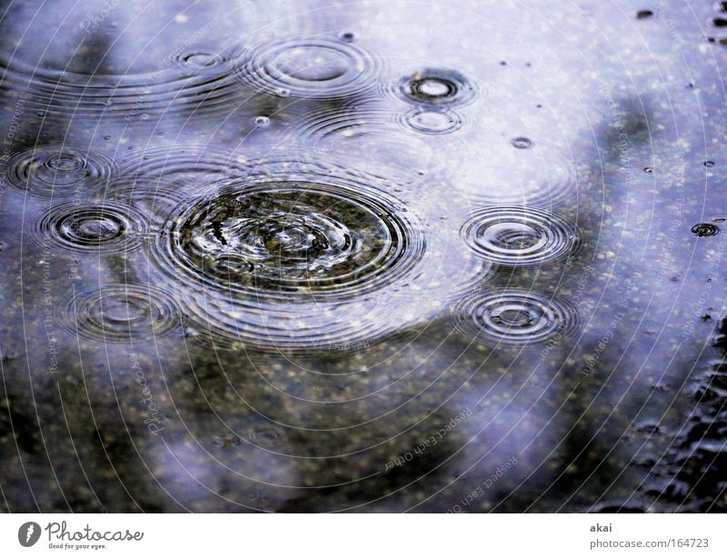 Baden-Baden.....die Frisur hält! Natur Wasser Gefühle grau See Regen Wassertropfen Kreis Regenwasser Teich Pfütze Wasseroberfläche nachhaltig kreisrund