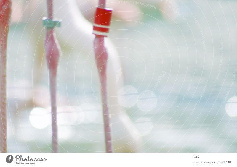 KNOPF AM BEIN blau Wasser Meer Einsamkeit kalt Traurigkeit See Beine Vogel Linie rosa Schilder & Markierungen stehen dünn Zoo trashig