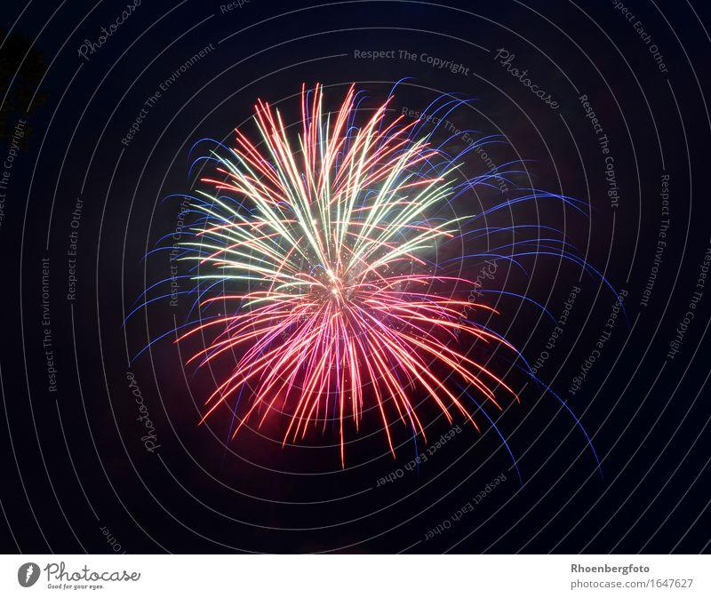 Feuerwerk Freude Glück Feste & Feiern Party glänzend Freizeit & Hobby Geburtstag Fröhlichkeit Kultur Romantik Zeichen Hochzeit Weltall Show Wunsch Medien