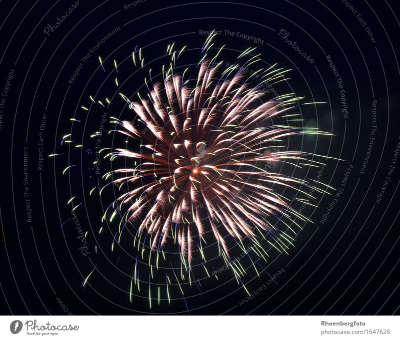 Feuerwerk Freude Gefühle Feste & Feiern Party Stimmung glänzend Freizeit & Hobby Zukunft Romantik Zeichen Hochzeit Show Veranstaltung Silvester u. Neujahr