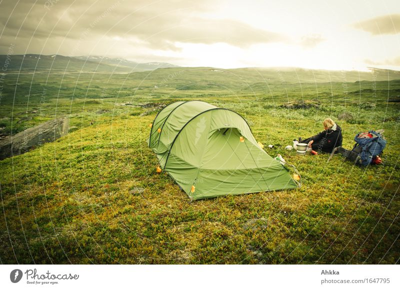 Zeltlager Mensch Ferien & Urlaub & Reisen grün Landschaft Einsamkeit ruhig Berge u. Gebirge feminin Freiheit wandern Abenteuer Camping Fjäll