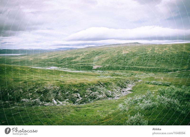 Der hohe Norden XVII Natur grün Landschaft Berge u. Gebirge wild Bach