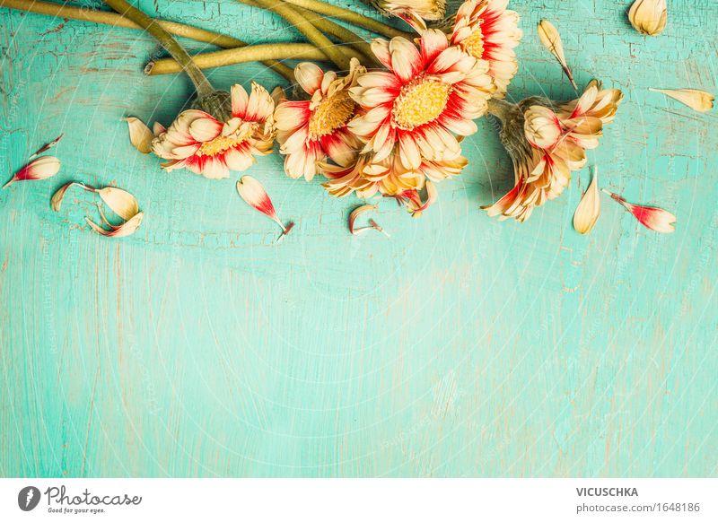 Schöne Blumen auf einem türkisfarbenen Hintergrund Natur Pflanze Sommer Blatt Liebe Blüte Frühling Gefühle Herbst Stil Feste & Feiern Design