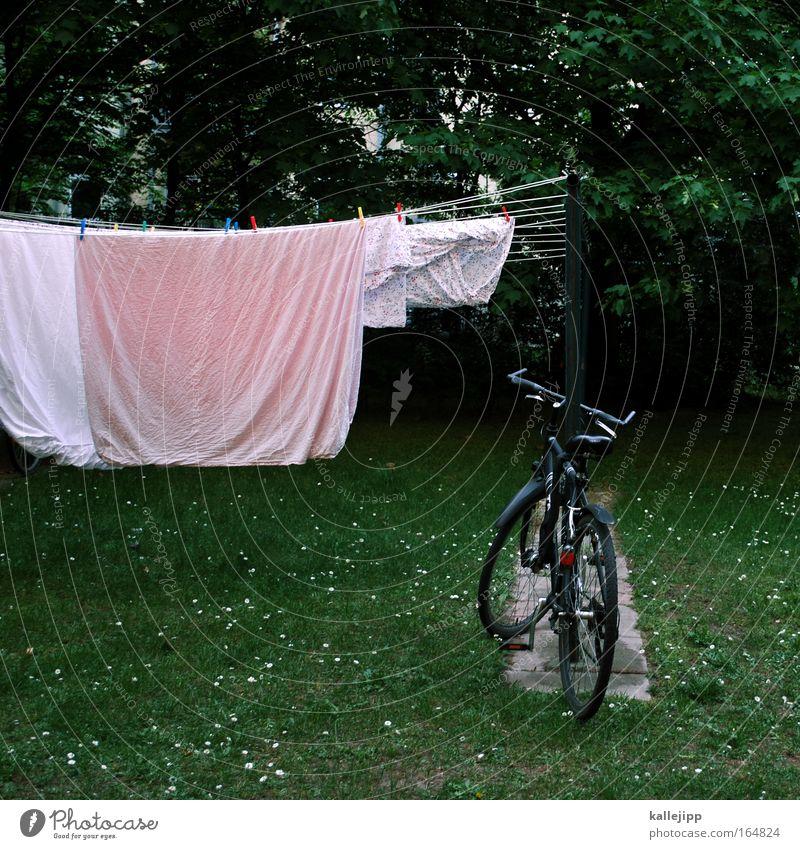 besuch der alten dame grün Haus Wiese Garten Luft Fahrrad rosa schlafen Häusliches Leben Reinigen Sauberkeit Bettwäsche Wäsche trocknen Fahrradrahmen Wäscheleine