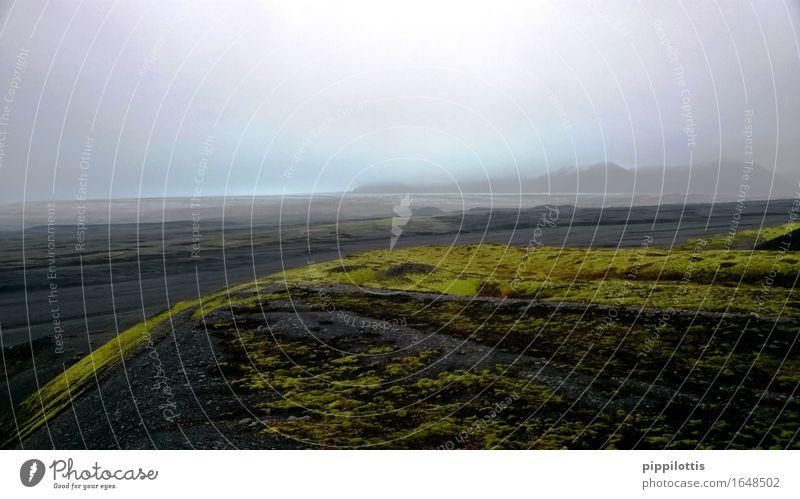 Gletschergrenze Natur Ferien & Urlaub & Reisen grün Landschaft Erholung Einsamkeit Ferne Berge u. Gebirge Umwelt Freiheit träumen Erde wandern Abenteuer