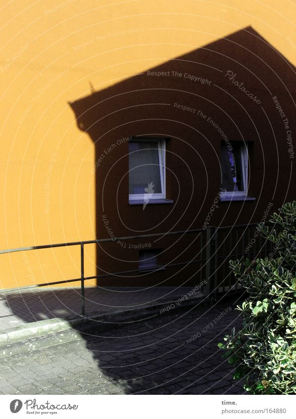 Haus im Haus Fenster schwarz gelb Wand Mauer Wohnung verrückt Kommunizieren bedrohlich Baustelle Dach Partnerschaft Handwerk Handwerker Grünpflanze