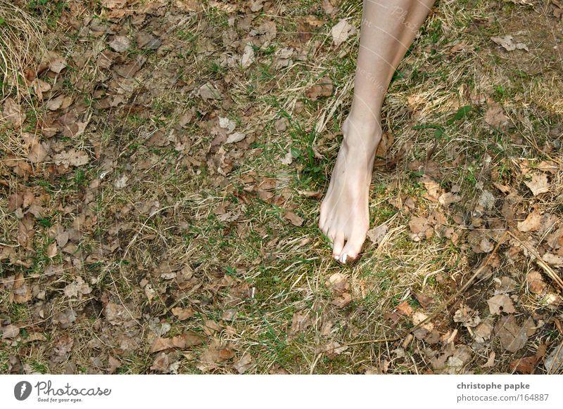 Alle wollen zurück zur Natur, aber keiner zu Fuß Jugendliche Sommer Blatt Erwachsene Erholung Umwelt Wiese feminin nackt Gras Beine Erde gehen laufen