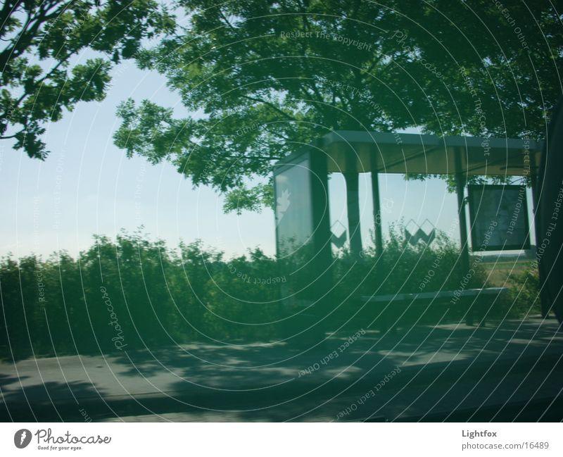 wo ist der bus Natur Baum Wetter Geschwindigkeit fahren fantastisch Dinge Station Wartehäuschen