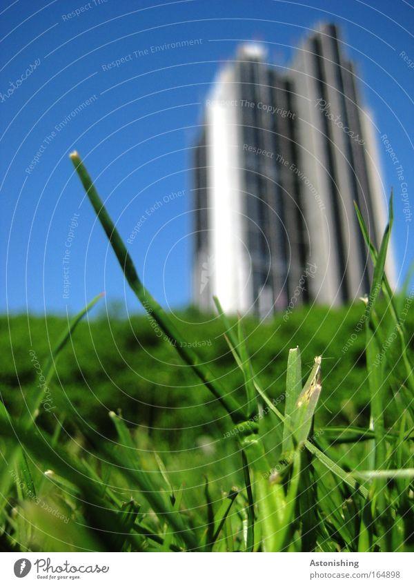 NATUR VS. TECHNIK - was wächst schneller? Himmel Natur Pflanze Ferien & Urlaub & Reisen Sommer Haus Wiese Umwelt Architektur Gras Gebäude Park Wetter Hochhaus Hamburg Technik & Technologie