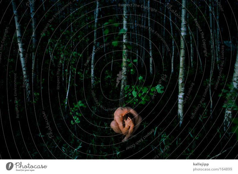 alone in the dark Mensch Natur Mann grün Baum Pflanze Einsamkeit Tier Blatt Erwachsene Wald Landschaft Umwelt dunkel Gras klein