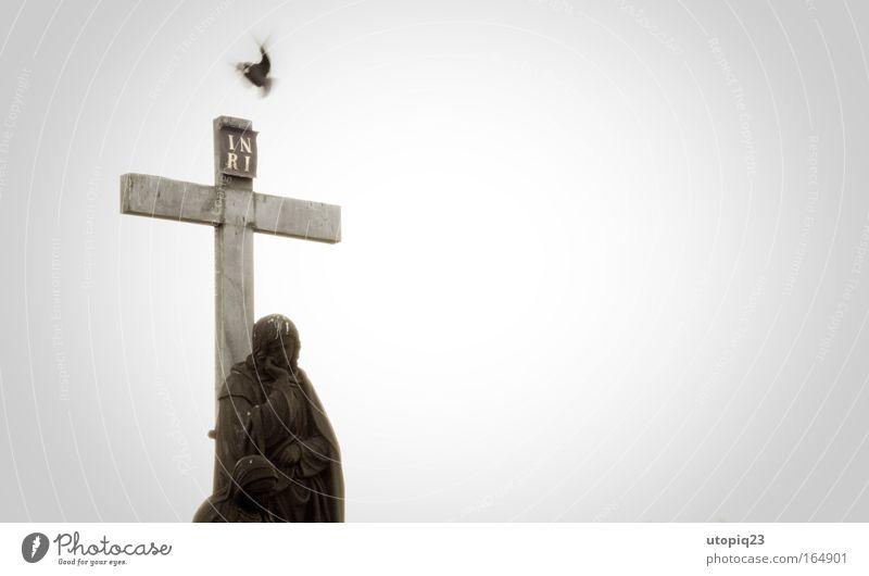 IESVS NAZARENVS REX IVDÆORVM Tier schwarz grau Stein Religion & Glaube Traurigkeit Vogel fliegen Beton gut Hoffnung Engel Schutz Zeichen Kreuz
