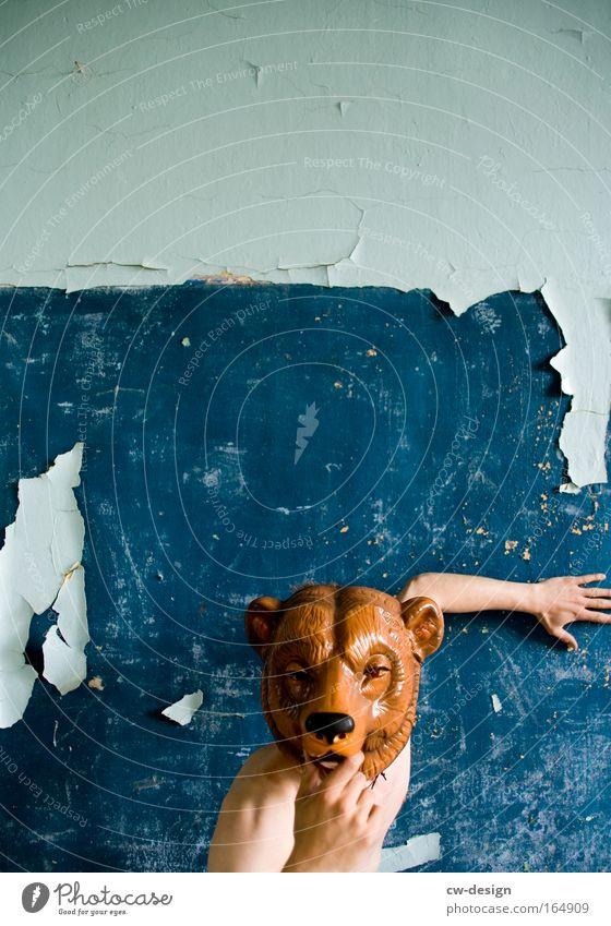 Bruno der Bär Mensch blau weiß Tier Gesicht Freiheit Stil Denken lustig braun Arme maskulin verrückt Tiergesicht Kreativität berühren