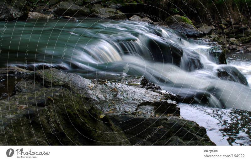Flow! Natur blau Wasser grün Pflanze Tier Umwelt Landschaft Bach grau Stein Wetter Klima Urelemente Fluss Flussufer