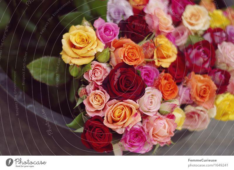 Blumenbouquet. Pflanze Rose Vergänglichkeit Blumenstrauß Rosenblüte mehrfarbig Blumenschale Blumenladen Blumengruß Liebe Liebeserklärung Natur