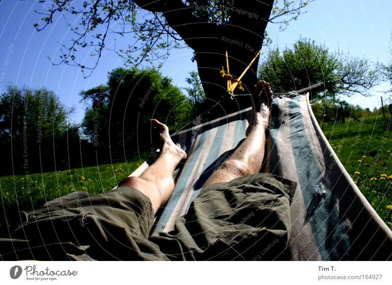 Hängematte Mensch Natur Mann Sommer Freude ruhig Erwachsene Erholung Wiese Glück Garten Beine Fuß träumen Zufriedenheit maskulin