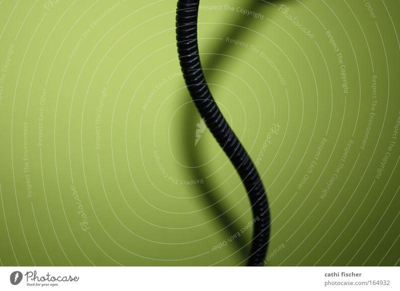 black mamba II Farbfoto Innenaufnahme abstrakt Blitzlichtaufnahme Schatten Mauer Wand Dekoration & Verzierung Metall Farbe Kunst grün schwarz Schlagschatten