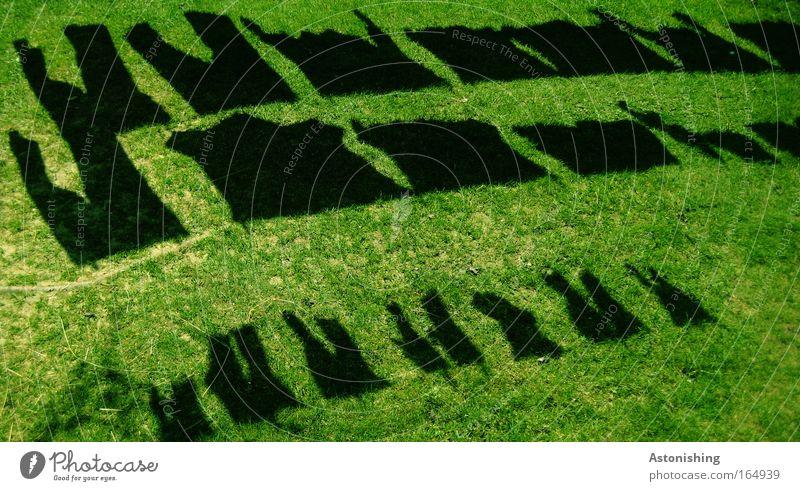 trocken? Farbfoto Außenaufnahme Muster Tag Schatten Kontrast Silhouette Garten Umwelt Natur Sommer Pflanze Gras Bekleidung T-Shirt Hemd Hose Stoff warten nass