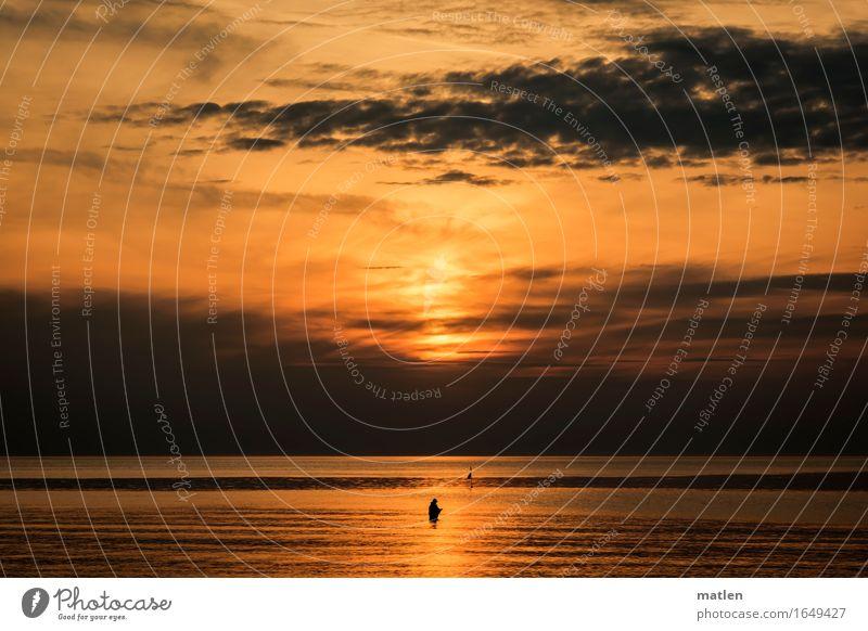 der Angler Natur Landschaft Wasser Himmel Wolken Horizont Sonnenaufgang Sonnenuntergang Frühling Wetter Schönes Wetter schlechtes Wetter Küste Strand Ostsee