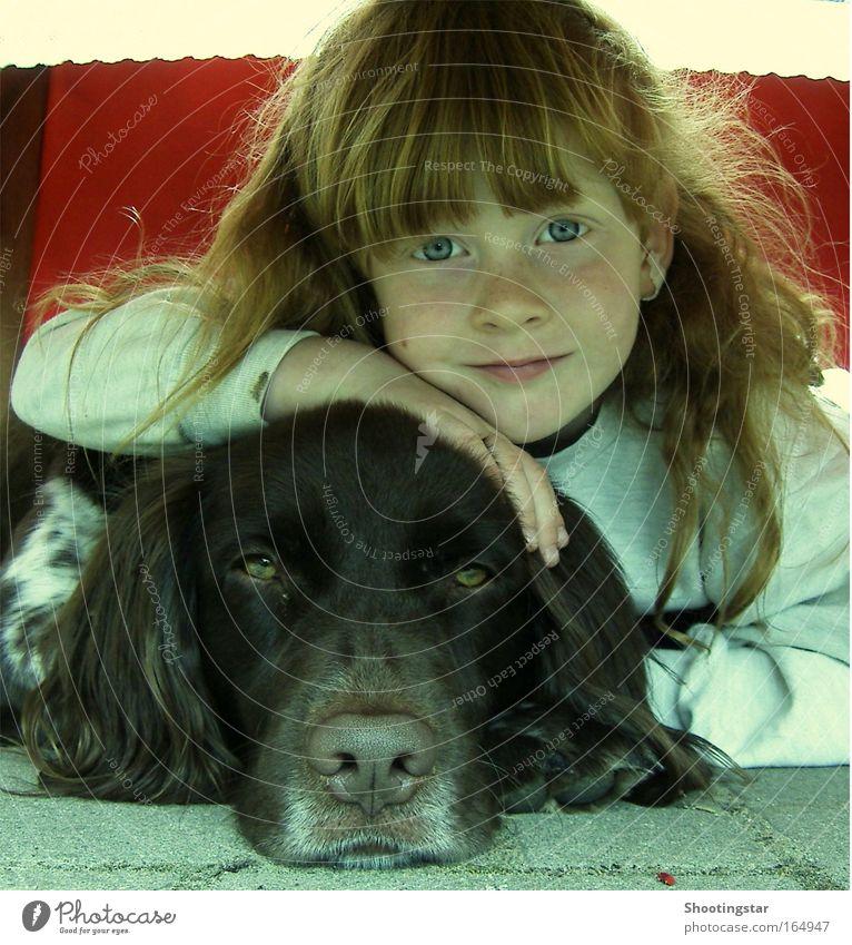 friends Mensch Kind Hund Mädchen Tier Gesicht Auge Liebe Spielen Kopf träumen Freundschaft Kindheit Zusammensein Zufriedenheit frisch