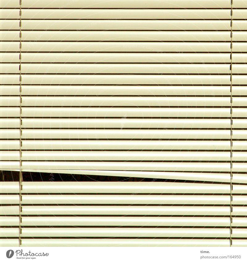Wetterkontrollvorrichtung Blick Fenster schlafen Sicherheit Schutz Jalousie Schlitz Rollo beige Durchblick parallel rechter Winkel geschlossen klemmen abdunkeln