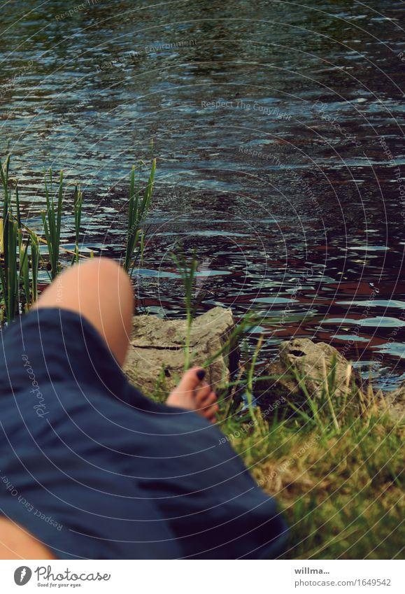 am flussufer Sommer Sommerurlaub feminin Junge Frau Jugendliche Erwachsene Fuß Knie Seeufer Flussufer Regnitz Kleid Erholung genießen liegen blau Farbfoto