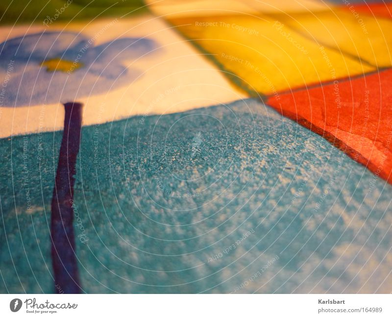 novalis. Natur blau Blume Sommer gelb Erholung Wärme träumen Kunst Freizeit & Hobby Wohnung Design Papier Romantik Kultur Dekoration & Verzierung