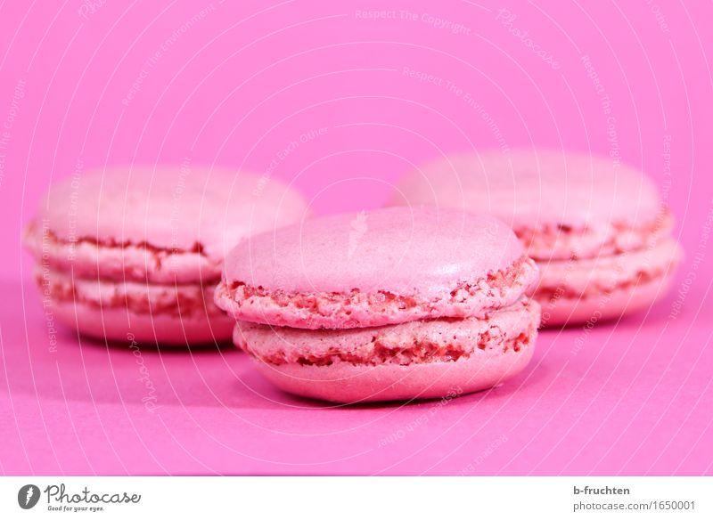 only for girls Süßwaren Kaffeetrinken Büffet Brunch Fingerfood süß feminin weich rosa Macaron Baiser Backwaren Keks Farbfoto Menschenleer Textfreiraum oben
